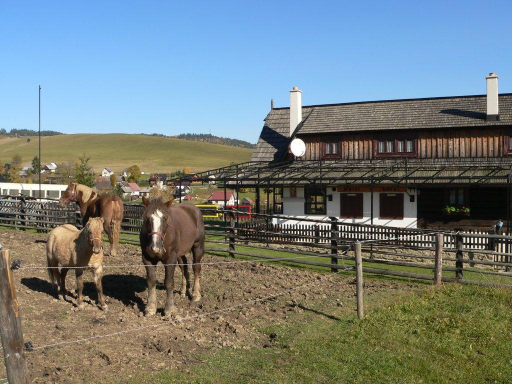 Velké Borové,farma(bufet Goral)