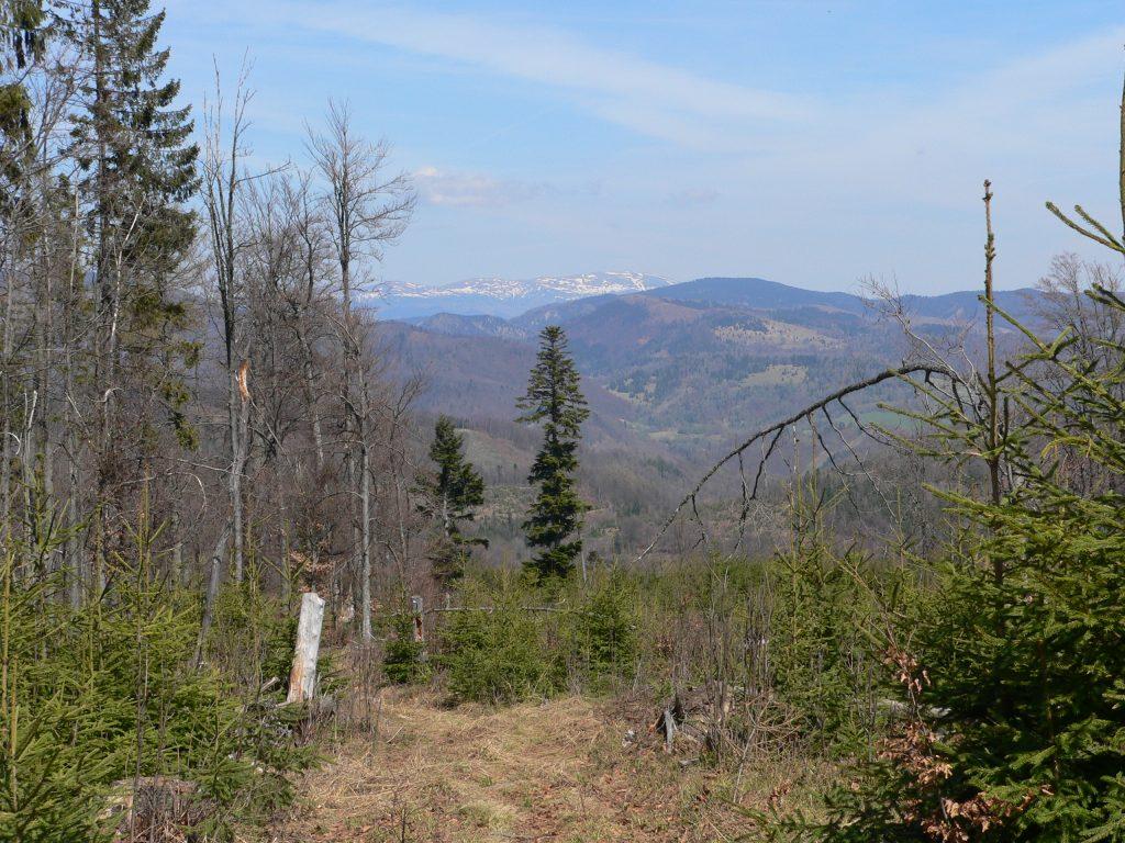 Rozsypok,výhled na Nízké Tatry