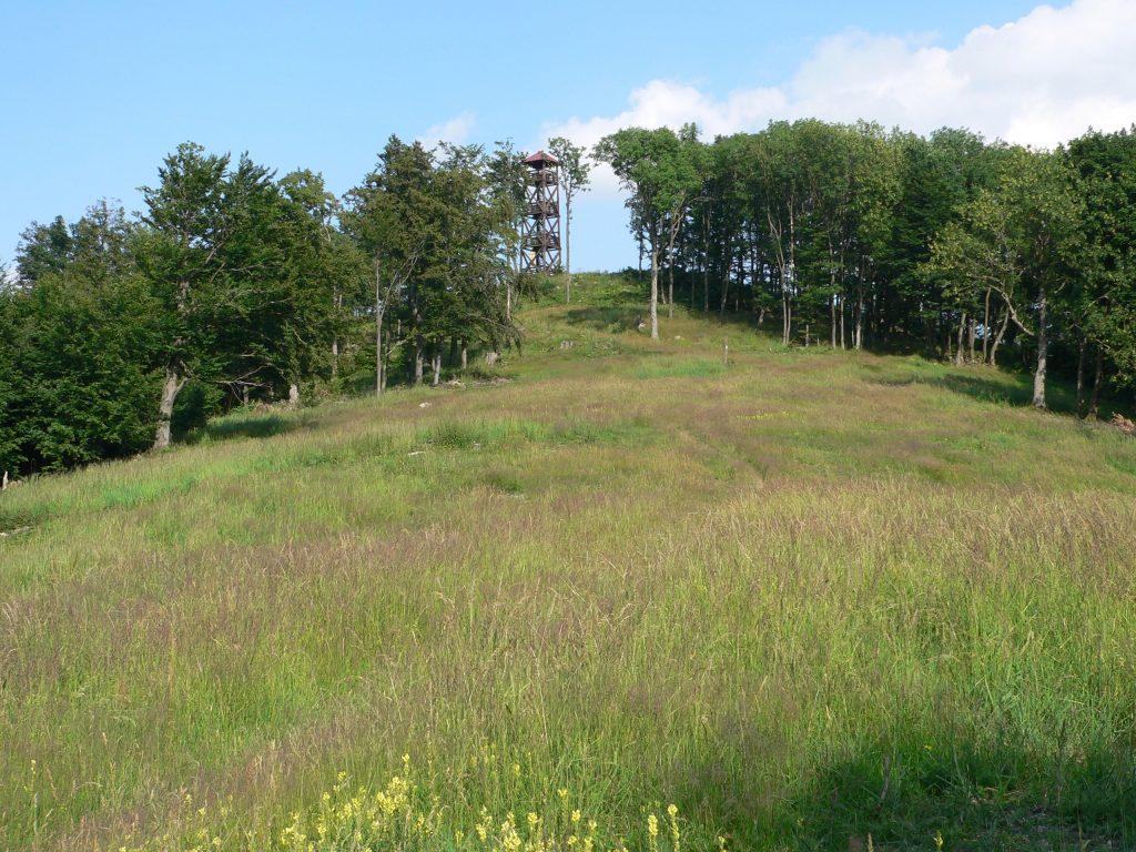 Panská Javorina(943m)
