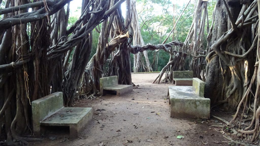 Mihintale,Mihindu Aranya Senasanaya