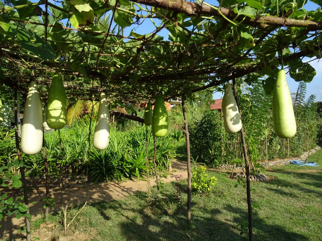 Inamaluwa,Spice Garden