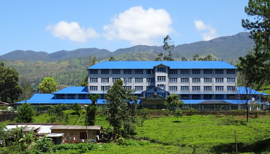 Blue Field Tea Center