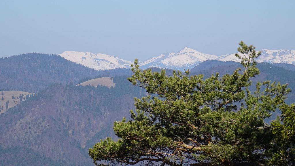 výhled z vrcholu Brankova na Vysoké Tatry
