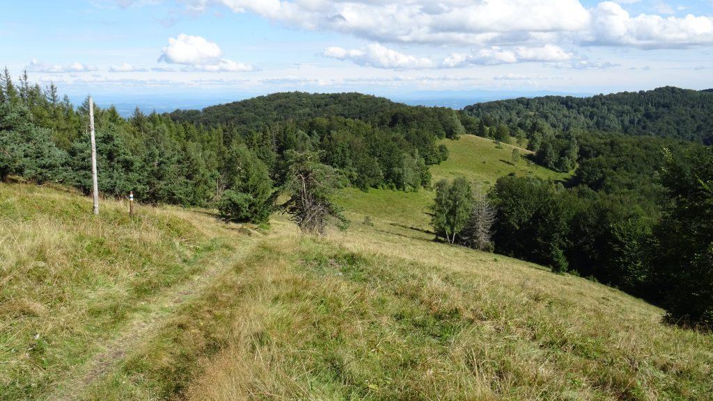 horské louky mezi Veľkou Javorinou a Chochuľkou (v pozadí Priehybky a Čergov)